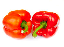 Two red peppers,  Royalty Free Stock Photo
