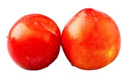 Two red plums. Stock Image