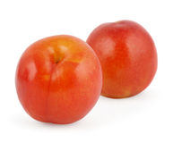 Two red plums  on white Royalty Free Stock Images