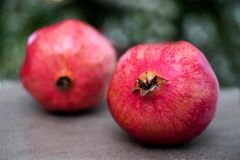 Two Red Pomegranates On Blurred Background royalty free stock photography
