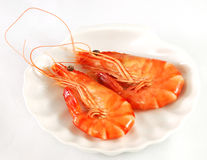Two red prawns 2 Royalty Free Stock Images