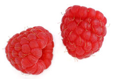 Two red raspberries. Close up over white Royalty Free Stock Image