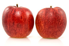 Two red rip apples Royalty Free Stock Photos