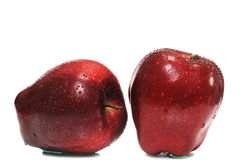 Two red ripe apple Royalty Free Stock Images