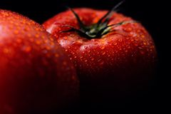 Two red, ripe tomatoes, washed, still with water droplets on them. On black background Royalty Free Stock Images