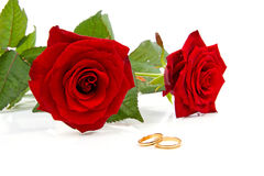 Two red roses and wedding rings. Over white background Royalty Free Stock Photo