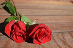 Two Red Roses on Wood. Pair of red rose flowers with stems and leaves, lying on a wood tabletop. Extra space for copy Royalty Free Stock Image