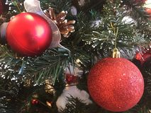 two red shiny christmas balls on tree. royalty free stock image