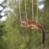 Two red squirrels on a swing Royalty Free Stock Photos
