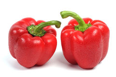 Two red sweet peppers. White background royalty free stock image