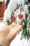 Two red textile hearts and hands on heavy snowy fir branch background, near red brick house. Merry Christmas, Happy New Year and stock images