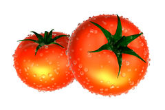 Two Red tomato covered with Raindrops. Foods and Dishes Series. Royalty Free Stock Photo