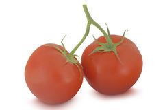 Two red tomatoes isolated on white background Stock Images