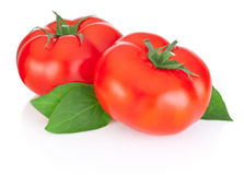 Two red tomatoes and leaves isolated on white. Two red tomatoes and leaves isolated on a white background royalty free stock image