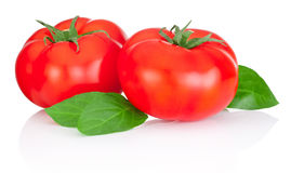 Two red tomatoes and leaves isolated on white background Royalty Free Stock Photography