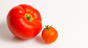 Two red tomatoes, small and big Royalty Free Stock Photos