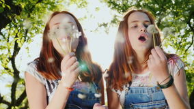 Two red twin sisters are playing with dandelion flowers. The fans are blowing on them, their hair highlights the sun. Cheerful frame, a happy childhood stock footage
