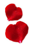 Two Red Valentin `s Day heart. Stock Photography
