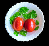 Two red wet Tomatoes with coriander leaves Stock Images