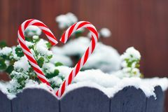 Two red and white striped candy canes forming the shape of a heart in front of snow covered plants royalty free stock photos