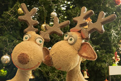 Two reindeer dolls in front of Christmas tree Stock Images