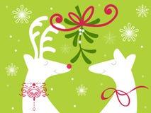 Free Two Reindeer Under Mistletoe Royalty Free Stock Photos - 61858848