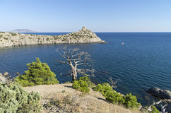 Two relict pine, live and dead, over the sea. Crimea, September. Two relict pine, live and dead,  standing together on a quiet bay.  The Black Sea coast, Crimea Royalty Free Stock Photos