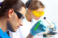 Two researchers in the lab Stock Photography