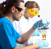 Two researchers in the lab Royalty Free Stock Photos