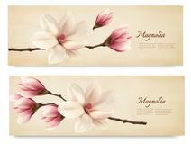 Two retro beautiful magnolia banners. Royalty Free Stock Image