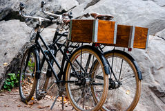 Two retro city bikes rest near rocks. Photograph of two retro cruizer bikes with wooden boxes on the back resting in a park near a large rock Stock Images