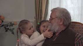 Two cute girls playing with their grandfather sitting in the chair. Granddaughters pull beard of kind looking senior man