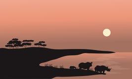 Two rhinoceros silhouette Royalty Free Stock Photo
