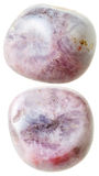 Two Rhodonite gemstones isolated Stock Image