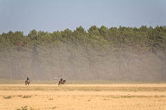 Two riders. In the spanish country, Segovia Royalty Free Stock Photography