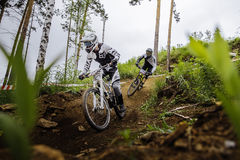 Two riders of athlete on bike down through woods from mountain Royalty Free Stock Images