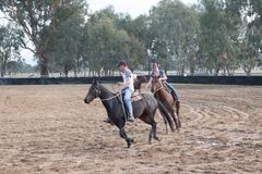 Horseplay at a Horsemanship Event