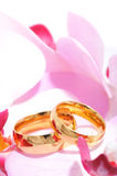 Two rings with orchis Royalty Free Stock Images