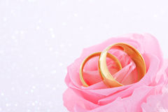 Two rings with rose Royalty Free Stock Photography