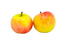 Two ripe apples Royalty Free Stock Images