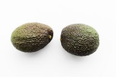 Two ripe avocados Haas on a white background royalty free stock image