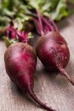 Two ripe beet Stock Image