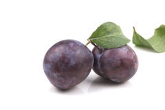 Two ripe blue ripe plums with leaves Royalty Free Stock Photography