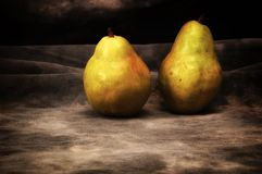 Two ripe bosc pears on gray studio backdrop royalty free stock image