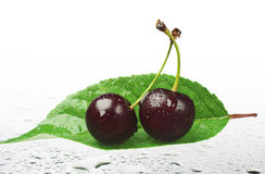 Two ripe cherry with water drops Royalty Free Stock Photos