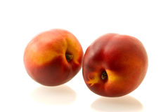 Two ripe fresh nectarines Royalty Free Stock Photos