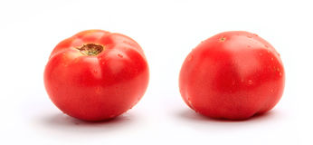 Two ripe fresh tomatoes Royalty Free Stock Image