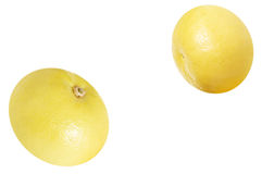 Two ripe grapefruits on a white. Stock Photos