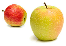 Two ripe juicy apple Royalty Free Stock Image