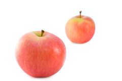 Two ripe juicy apples. On a white background stock photography